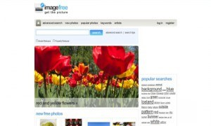 royalty free images commercial use