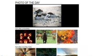 flickr royalty free photos