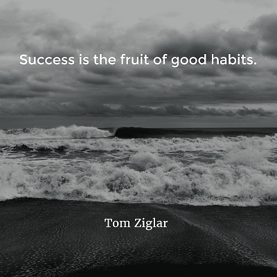 Tom Ziglar Success is the fruit of good habits