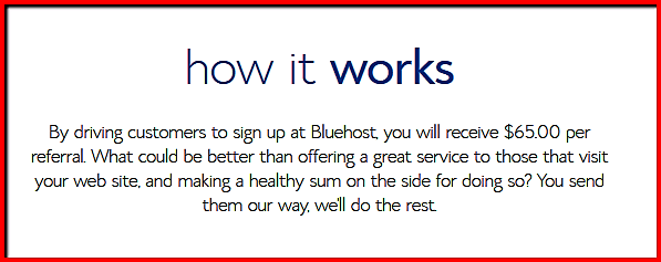 what is the best hosting provider